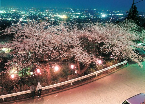 Shimotsuke3hanami1487x348